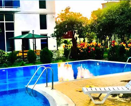 60 ლარად! ორადგილიანი ნომერი გონიოს სასტუმროში `სან პალასი / Sun Palace` !